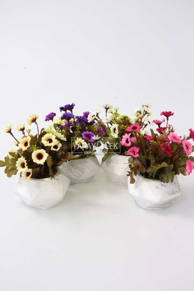 Yapay Çiçek Deposu - Tombul Beton Saksıda Bahar Papatyası 4lü Set