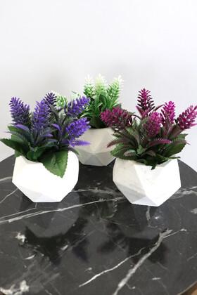 Yapay Çiçek Deposu - Beton Saksıda Yapay Bitki 3lü Set Model 3