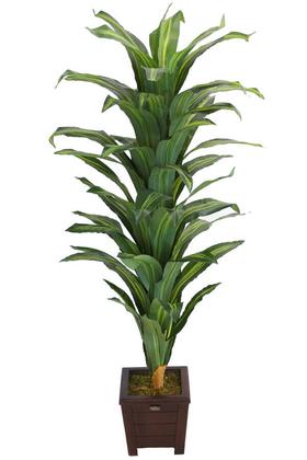 Yapay Çiçek Deposu - Yapay Drecina Ağacı 145 cm Dracaena Plant (Yeşil-Sarı)