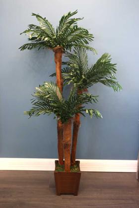 Yapay Çiçek Deposu - Yapay Areka Ağacı 3 Gövdeli 175cm