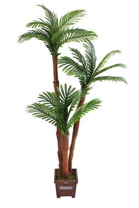 Yapay Çiçek Deposu - Yapay Areka Ağacı 3 Gövdeli 180cm