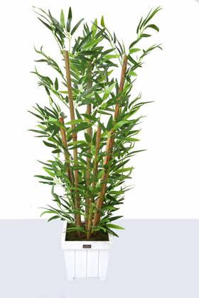 Yapay Çiçek Deposu - Yapay Bambu Ağacı 6 Gövde 110 cm(Beyaz Ahsap Saksı)