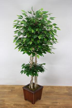 Yapay Çiçek Deposu - Yapay Bodur Benjamin Ağacı 135 cm Yeşil