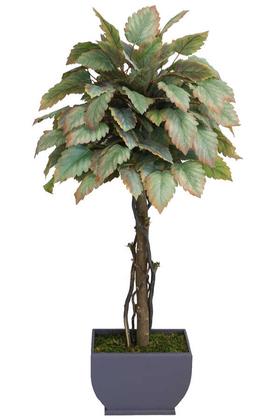 Yapay Çiçek Deposu - Yapay Bodur Ceviz Ağacı Hazan 150cm
