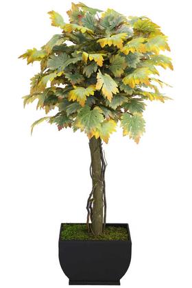 Yapay Çiçek Deposu - Yapay Bodur Ceviz Ağacı Sonbahar 150cm