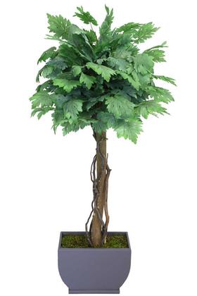 Yapay Çiçek Deposu - Yapay Bodur Ceviz Ağacı Yeşil 150cm