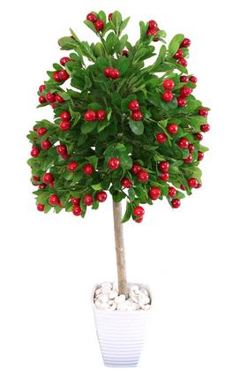 Yapay Çiçek Deposu - Yapay Bodur Kiraz Ağacı Melamin Saksıda 100 cm