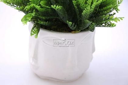 Buda Saksıda Yapay Mazı Bitki Tanzimi 20 cm (Beyaz) - Thumbnail