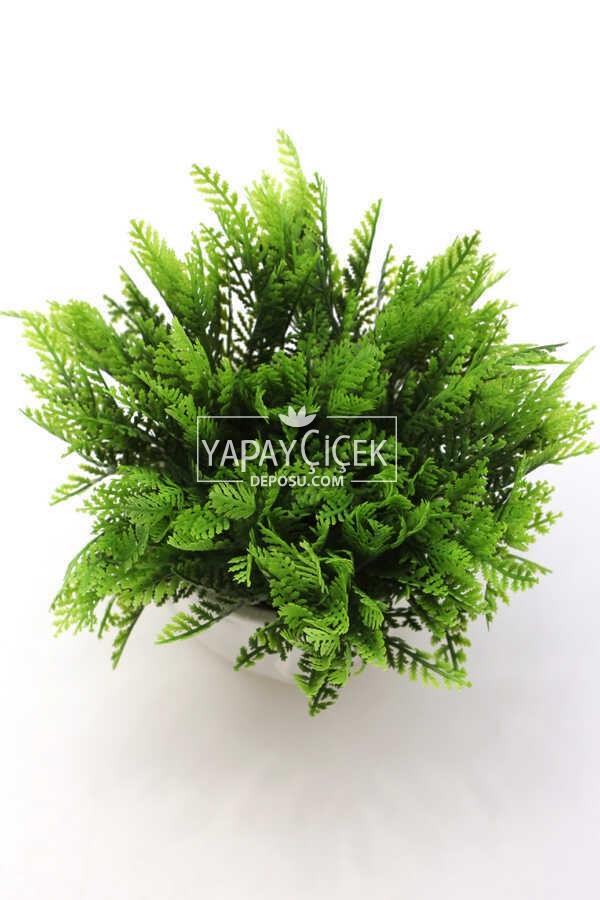 Buda Saksıda Yapay Mazı Bitki Tanzimi 20 cm (Beyaz)