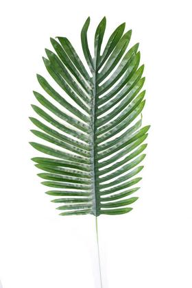 Yapay Çiçek Deposu - Yapay Palmiye Ağacı Yaprağı 75 cm
