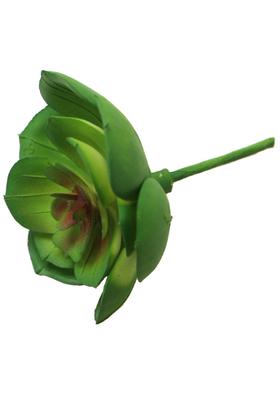 Yapay Çiçek Deposu - Yapay Çiçek Islak Succulent Sukulent Echeveria Green