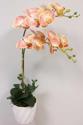 Yapay Çiçek Deposu - Yapay Çiçek Melamin Saksıda 2li Orkide Tanzim Kavuniçi 75 cm