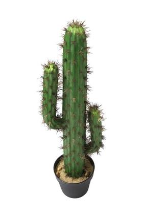 Yapay Çiçek Deposu - Yapay Kaktüs Ağacı 70 cm Adam Model
