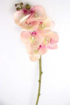 Yapay Çiçek Deposu - Yapay Dal Islak Exclusive Orkide Çiçeği 68 cm Pembe