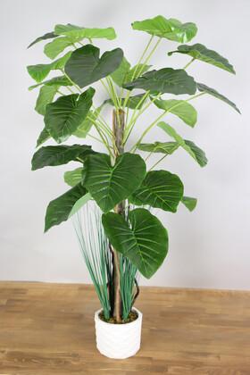 Yapay Çiçek Deposu - Yapay Difenbahya Ağacı 105 cm Beton Saksılı Koyu Yeşil