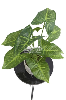 Yapay Çiçek Beton Saksıda10 Dallı Lüx Difenbahya Bitki 42cm - Thumbnail