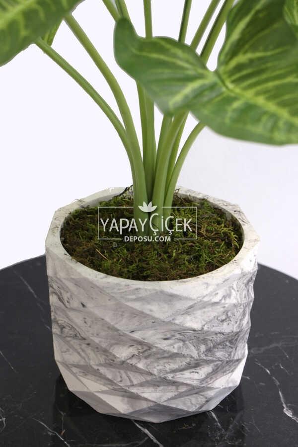 Yapay Çiçek Beton Saksıda10 Dallı Lüx Difenbahya Bitki 42cm