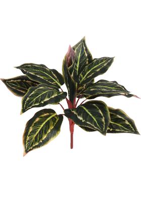Yapay Çiçek Deposu - Yapay Fittonia Kraton Bitkisi 40 cm Yeşil-Kızıl