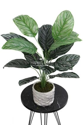 Yapay Çiçek Beton Saksıda18 Dallı Lüx Egzotik Bitki 65cm Yeşil-Beyaz - Thumbnail