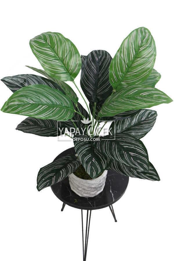 Yapay Çiçek Beton Saksıda18 Dallı Lüx Egzotik Bitki 65cm Yeşil-Beyaz