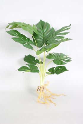 Yapay Çiçek Deposu - Yapay Lüx Deve Tabanı Bitkisi 55 cm Köklü Model