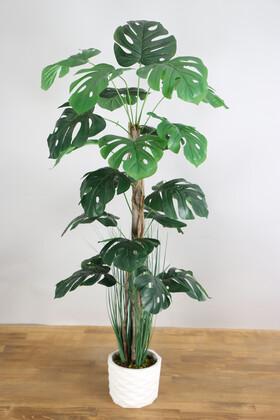 Yapay Çiçek Deposu - Yapay Monstera Ağacı 105 cm Beton Saksılı