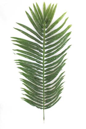 Yapay Çiçek Deposu - Yapay Palmiye Ağacı Dalı 120 cm