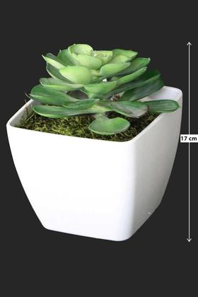 Yapay Çiçek Deposu - Melamin Saksıda Yapay Succulent Sukulent Echeveria 17cm