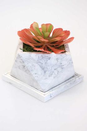 Yapay Çiçek Deposu - Tepsili Beton Saksıda Büyük Succulent Tanzimi