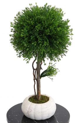 Yapay Çiçek Deposu - Dekoratif Lüx Top Ağaç Çam Model 35x60 cm Koyu Yeşil
