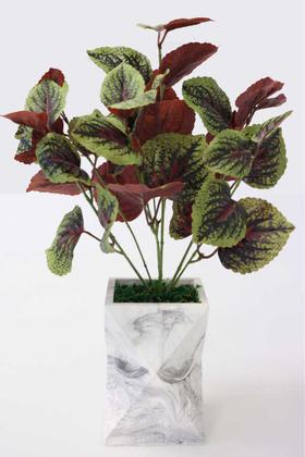 Yapay Çiçek Deposu - Uzun Model Beton Saksıda Yaprağıgüzel Bitkisi