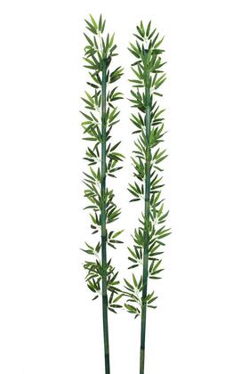Yapay Çiçek Deposu - Yapay Yapraklı Yeşil Bambu 200 cm