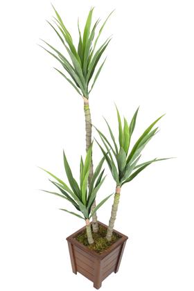 Yapay Çiçek Deposu - 3 Gövdeli Geniş Yapraklı Yapay Yucca Ağacı 160 cm