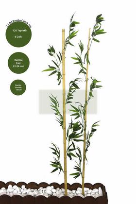 Yapay Çiçek Deposu - Gerçek Bambu Yapay Yeşil Yapraklı 150 cm