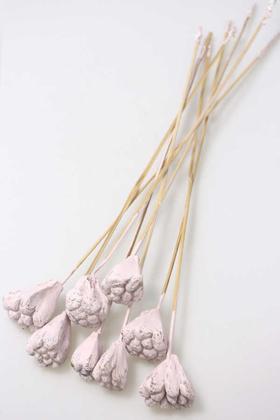 Yapay Çiçek Deposu - 8li Tropik Jack Seed Kuru Çiçek Pudra
