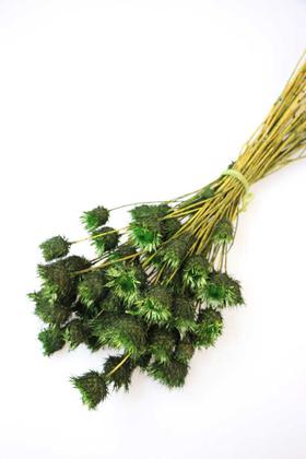 Yapay Çiçek Deposu - Kuru Çiçek Dikenli Çilek Demeti Yeşil