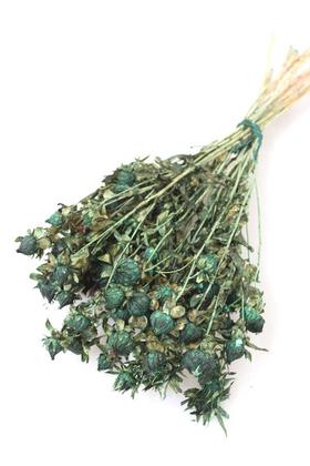 Yapay Çiçek Deposu - Kuru Çiçek Kartamus Yeşil