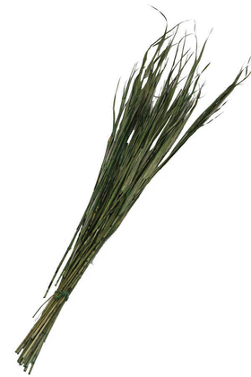 Yapay Çiçek Deposu - Kuru Saz Kamış Demeti Yeşil 100cm