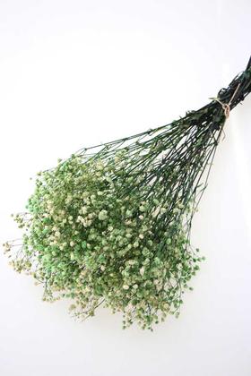 Yapay Çiçek Deposu - Şoklanmis Cipso Demeti Yeşil